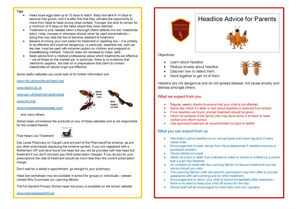 How to prevent head lice after exposure & from spreading: 9 tips